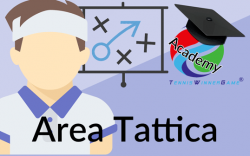 Card-Acedemy-Tattica